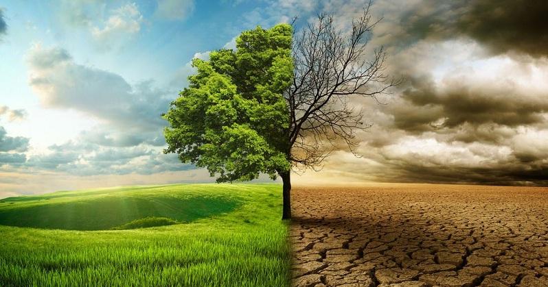 Изменение климата