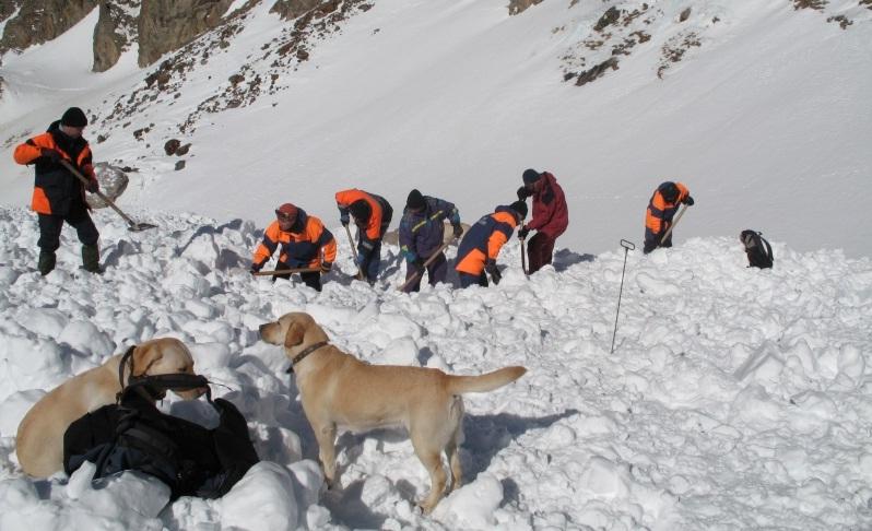 Поиск людей под снегом